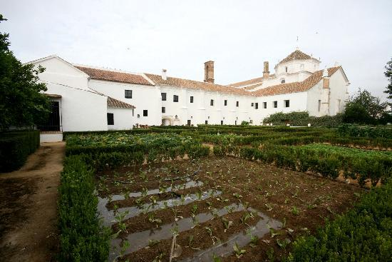 Palma Del Rio, Spanien: Garten