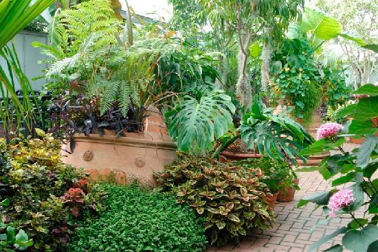Biltmore Estate : Beautiful and creative container gardens within our historic Conservatory