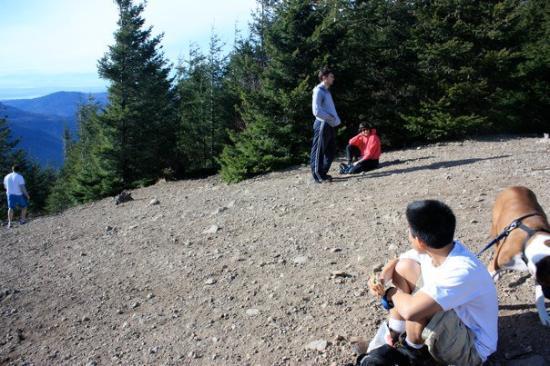 Tiger Mountain : IMG_5781