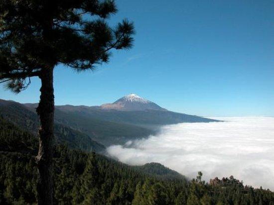 Tenerife, Spanyol: Mar de Nuver