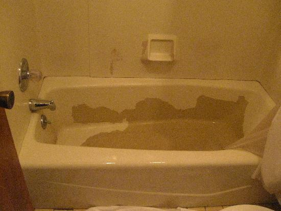 Super 8 Stevensville: One of the bathtubs in our room.