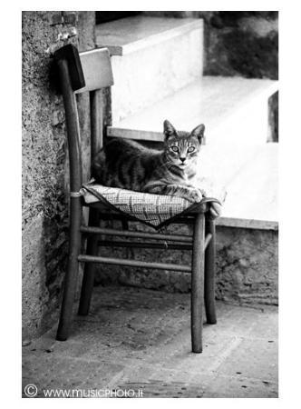 Capalbio Photo
