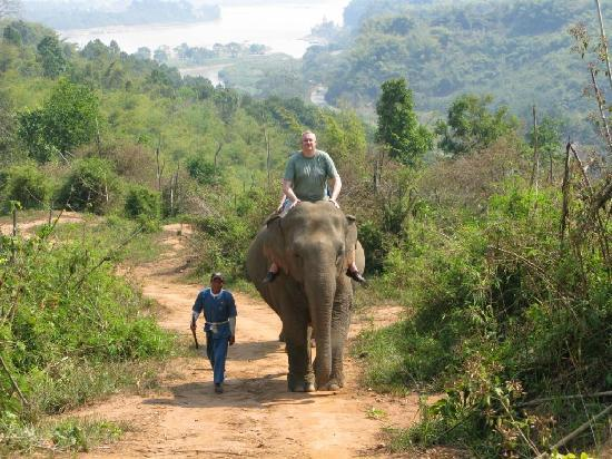 Anantara Golden Triangle Elephant Camp & Resort: Enormous beast and Boun Na