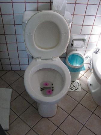 Foto de hotel pousada aguazul b zios un lindo detalle de - Detalles de bienvenida ...