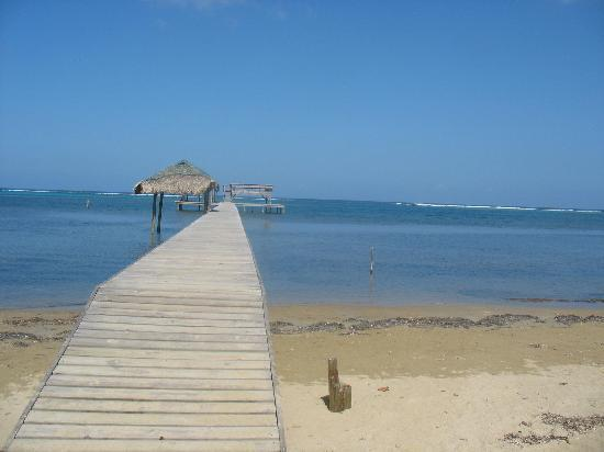 Sundancer Cabanas Roatan Beach Front: The two tiered dock was a great spot to reflect on the beauty around me.