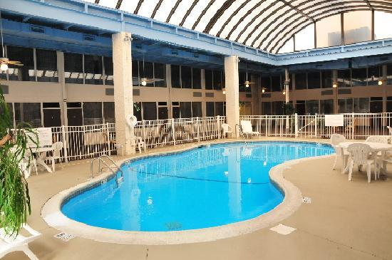BEST WESTERN Albany Airport Inn: Pool Area