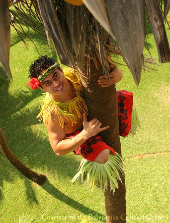 Pusat Budaya Polynesian