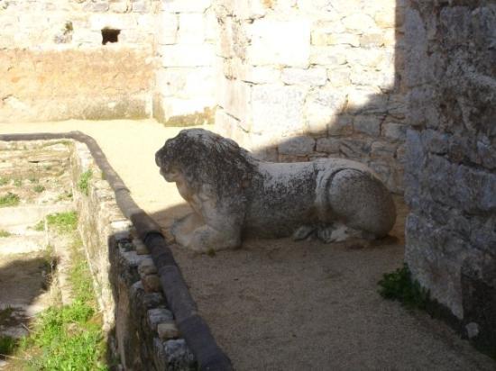 Milas, Turkiet: Mileto: terme, particolare di statua di leone.