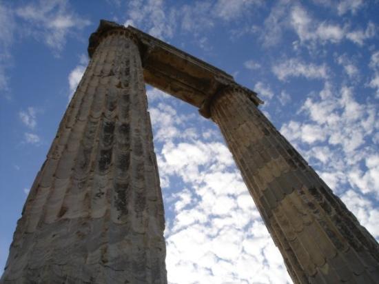 Didima: Tempio di Apollo, particolare delle colonne (uniche ancora in piedi).