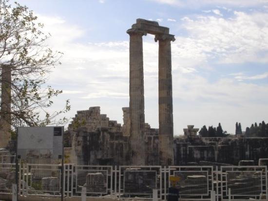 Didima: Tempio di Apollo.