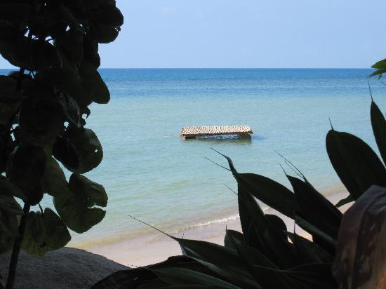 Harmony Beach Resort: Fab floating barge