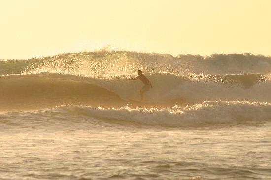 Santa Teresa, Costa Rica: riding the wave