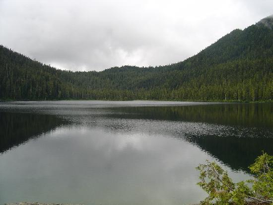 Ocean to Alpine Adventure Lodge: lake view