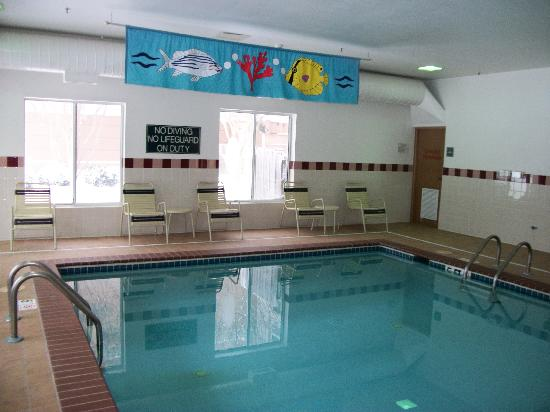 Hampton Inn & Suites Williamsburg-Richmond Rd.: Indoor Pool