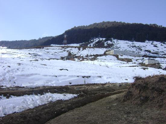 Auli, India: Snow every where