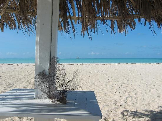 Anegada Beach Cottages: our own private palapa hut on the beach
