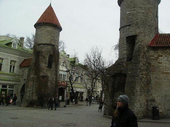 Controvento: Estonia Old Town Tallinn