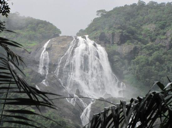 Ponda, India: Dudhsagar waterfall