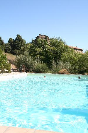 Castello di Gaiche: Swimming pool