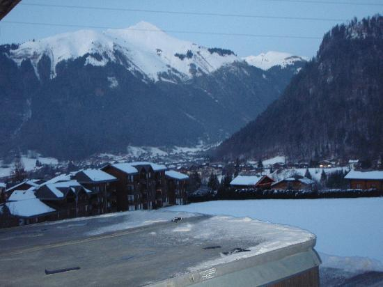 R&S - Chalet Guytaune: View from the hot tub!!