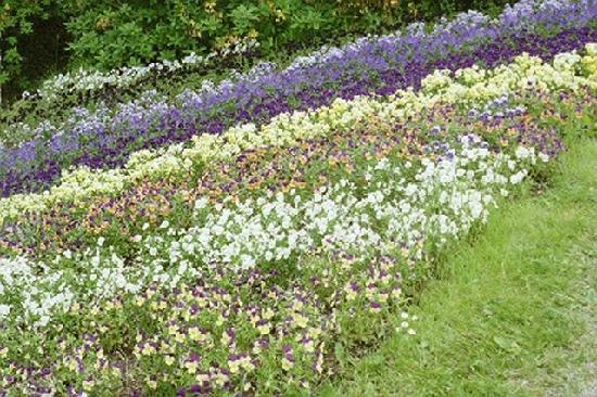 Helsingborg, Suecia: Sofierö gardens