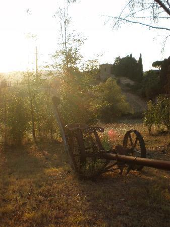 Fattoria di Cavaglioni: giardino a attrezzi
