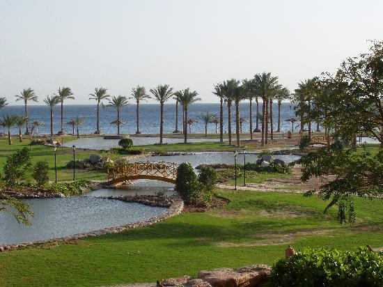 Movenpick Resort Taba Hotel : view of hotel grounds