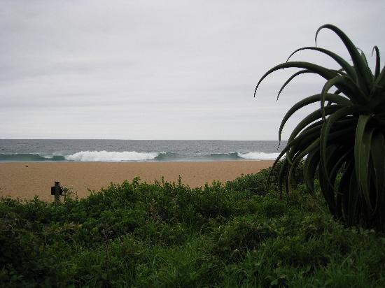 Fairmont Zimbali Lodge: plage
