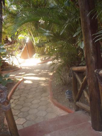 Cocos Cabanas: Hotel grounds