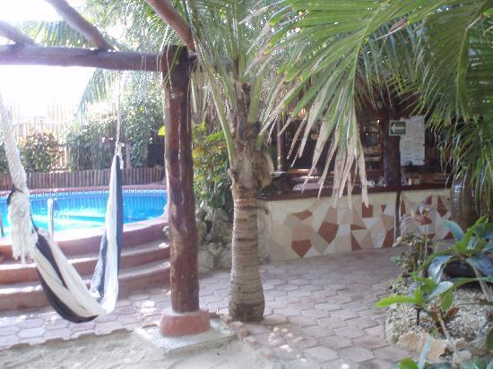 Cocos Cabanas: Pool