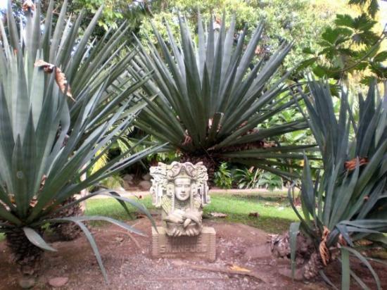 La Ceiba, Honduras: Park