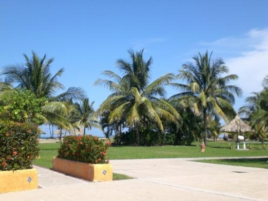 La Ceiba, Honduras: Resort on one of the sunny days.