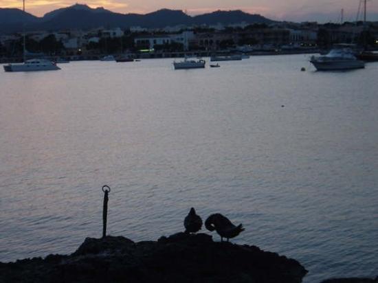 Porto Colom Photo