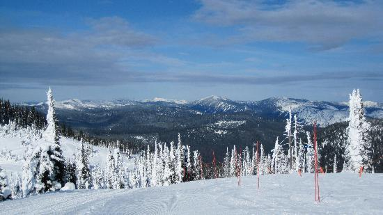 The Master Suite Bed and Breakfast: View from the slope at Whitefish