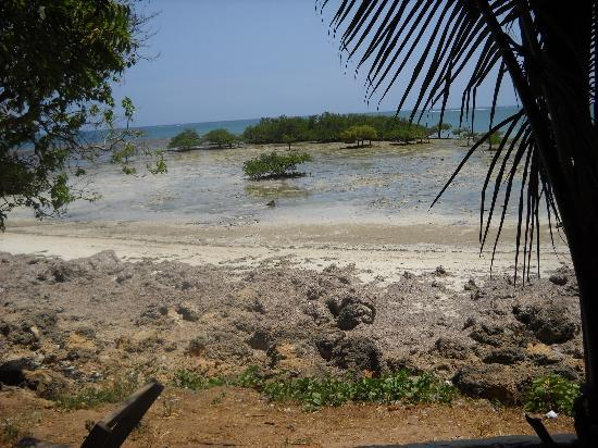 The Beach Africa: the view
