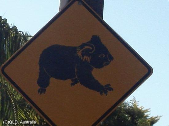 Atherton, Australien: Signs you only see in Australia