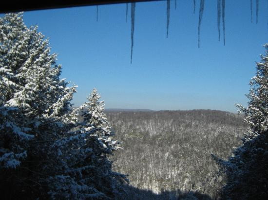 "Blackwater Falls State Park Lodge: View from a ""canyon view"" room"