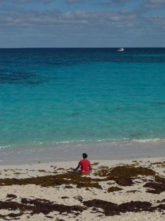 Sivananda Ashram Yoga Retreat : The beach in front of the ashram
