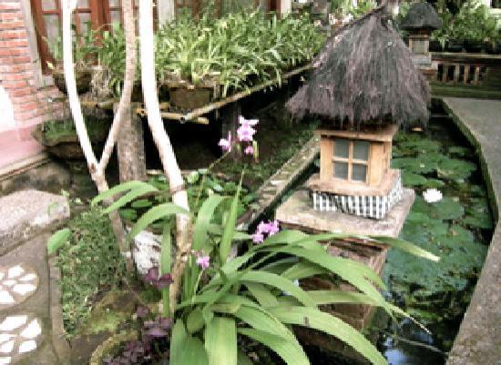 Ketut's Place: jardin