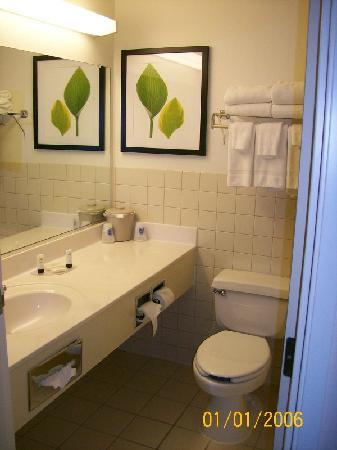 Fairfield Inn & Suites Minneapolis-St. Paul Airport: Bathroom