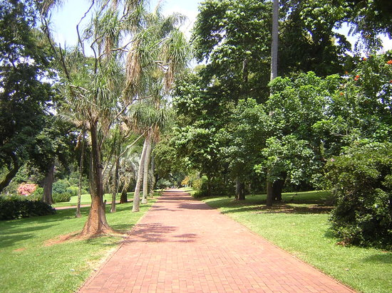 Durban, South Africa: Path at Botanical Gardens