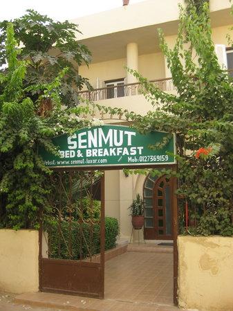 Senmut Luxor B&B: Front entrance