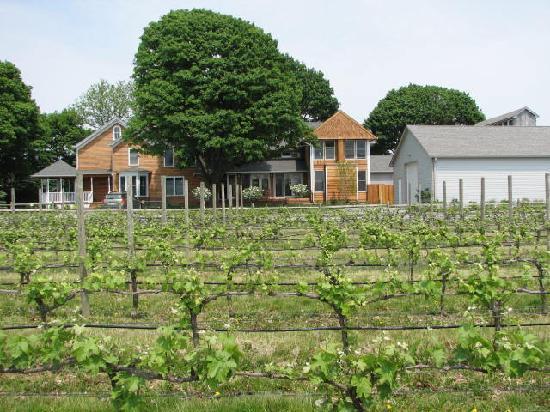 the winery Picture of Shinn Estate Farmhouse Mattituck TripAdvisor