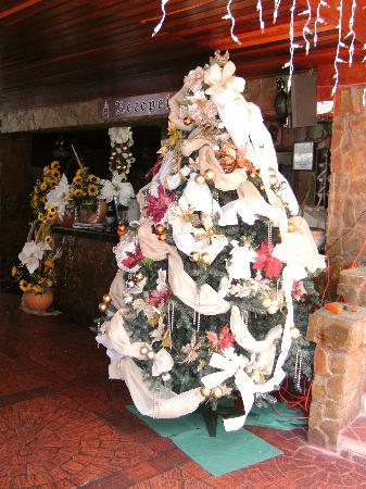 Hotel Castillo El Milagro: navidad