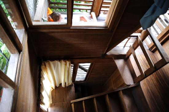 Rupa Wasi  Lodge: The stairs and balcony