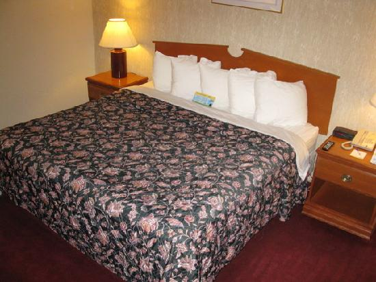 Days Inn Bangor Airport: Queen Bed - Days Inn BGR