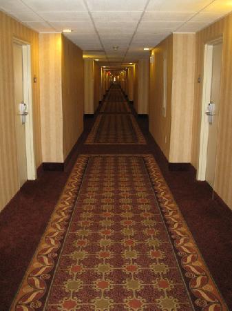 Quality Inn Bangor Airport : Hallway - Days Inn BGR