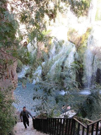 Ma'In Hot Springs: hot spring waterfall