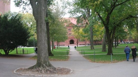Harvard Gardens