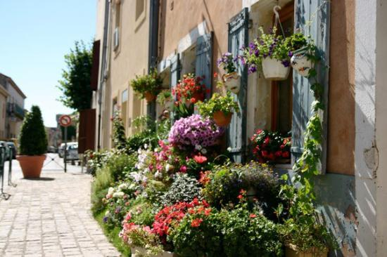 Aigues-Mortes, France: Une rue